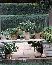 12 best plastic plant pots images on pinterest gardening