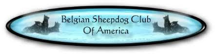 belgian shepherd stomach cancer health
