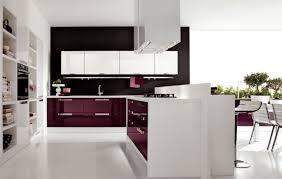 frightening photos of kitchen cabinet edge pulls popular new style