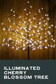 best 25 christmas lights etc ideas on pinterest christmas