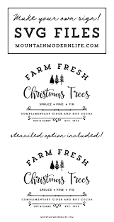 best 25 fresh christmas trees ideas on pinterest christmas tree