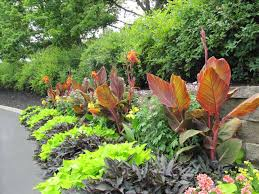 Landscaping Backyard Ideas by Simple Tropical Landscaping Ideas Fleagorcom