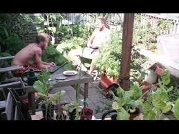 building vegetable garden on roof in amsterdam 30min youtube