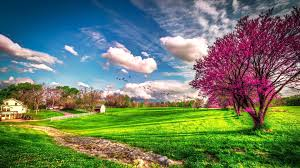 Beautiful Images Beautiful Spring Wallpapers Pictures Images