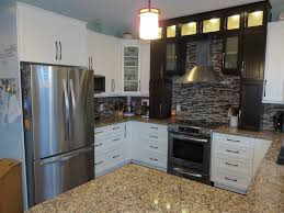 Crackle Kitchen Cabinets Black White Kitchen Cabinet Kitchen Traditional With Single Wall