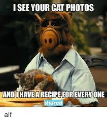 Alf Meme - i see your cat photos shared alf meme on me me