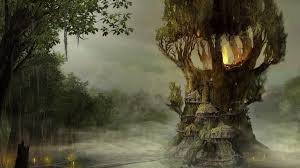 mystic tree neverland beatiful places pinterest