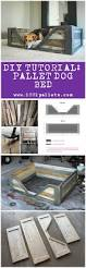 Upcycled Drawer Pet Bed Diy by Diy Pdf Tutorial Pallet Dog Bed U2022 1001 Pallets U2022 Free Download