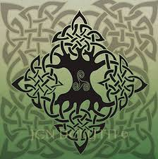 celtic tree of by jen delyth celtic myth and symbol