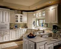 Handicap Accessible Kitchen Cabinets by Accessible Solutions Is A Premiere Resource For Specially Adapted