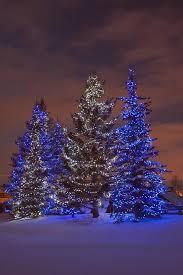 Christmas Outdoor Decorations Calgary by Christmas In Calgary Alberta Canada Winter Pinterest