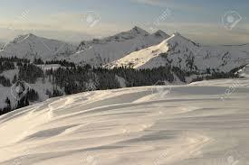 rainier ridge a late winter scene from 6 000 feet 1 800 meters