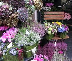 Flowers Near Me - paris breakfasts paris pinks