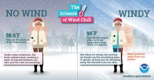 winter infographics