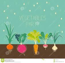 vegetable garden clipart panda free images garden trends