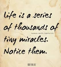 life quote board of wisdom quotes of the day 10 pics quotes pinterest wisdom