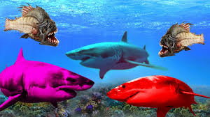deep blue sea shark attack open water looney tunes children