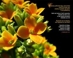 thanksgiving bible verses kjv 1 corinthians 13 4 7 bible verse