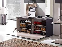 Shoe Cabinet Shoe Cabinet With Doors Models U0026 How To Care It Home Interiors