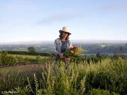 Cut Flower Garden by The Perils Of Starting A Cut Flower Farm Saga