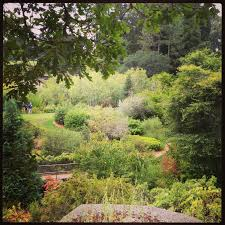 Wpa Rock Garden by A And Her Fork Day Trip Lake Anza Honey Mint Melon Salad