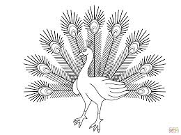 cartoon peacock coloring page free printable coloring pages