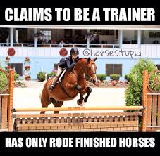 Horse Riding Meme - 11 best horse memes images on pinterest horses horse and meme