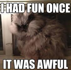 Colonel Meow Memes - colonel meow image gallery know your meme