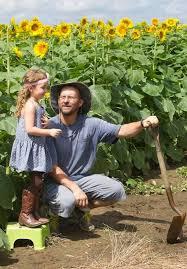 Grinter 37 Best Grinter U0027s Sunflower Farm Images On Pinterest Sunflowers