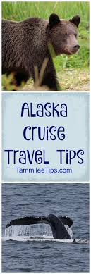 Alaska travel agent training images Best 25 cruise travel agent ideas cruise packing jpg