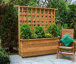 Ideas To Create Privacy In Backyard Best 25 Privacy Walls Ideas On Pinterest Garden Privacy Screen