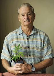 Murray Meme - bill murray know your meme