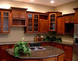 Shaker Cherry Kitchen Cabinets Cherry Double Shaker