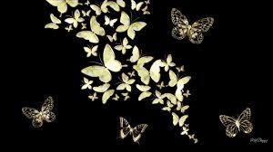 wallpapers of glitter butterflies black gold wallpaper collection 56