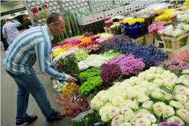 wholesale flowers top bulk flowers with wholesale flowers flower arrangements