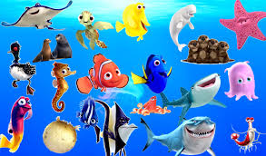 learn sea animals u0026 ocean water animals names and sound real sound