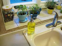 Moen Kitchen Faucet With Soap Dispenser Rooster Soap Dispenser Tags High Definition Kitchen Soap