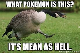 Goose Meme - what pokemon is this it s mean as hell mean goose meme generator