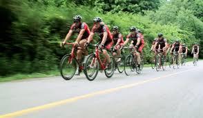 audi cycling team danbury audi