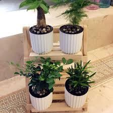 Herb Shelf Popular Rack Pot Buy Cheap Rack Pot Lots From China Rack Pot