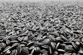 sunflower seeds valmar ingredients