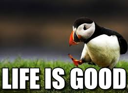 Life Is Good Meme - life is good unpopular opinion puffin meme on memegen