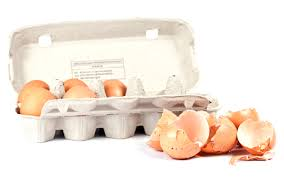 ground egg shells 15 surprising uses for eggshells one thing by jillee