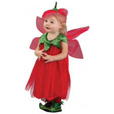 Strawberry Halloween Costume Baby Baby Costumes Mardigrasoutlet