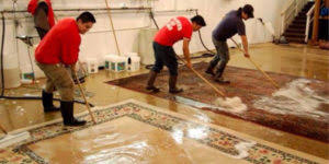Area Rug Cleaning Toronto About Us Area Rugs Cleaning
