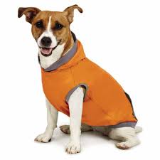 Insect Shield Clothing Reviews Insect Shield Sleeveless Dog Hoodie Carrot With Same Day