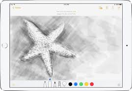 use apple pencil with ipad pro apple support