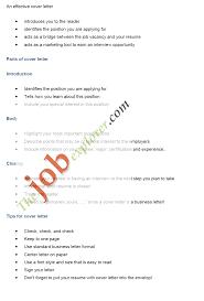 professional biodata format for job 14 cv format for job application pdf basic appication letter