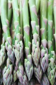 growing asparagus in minnesota home gardens vegetables yard