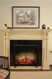 Dimplex Electric Fireplace Beautiful Dimplex Electric Fireplace In Living Room Traditional